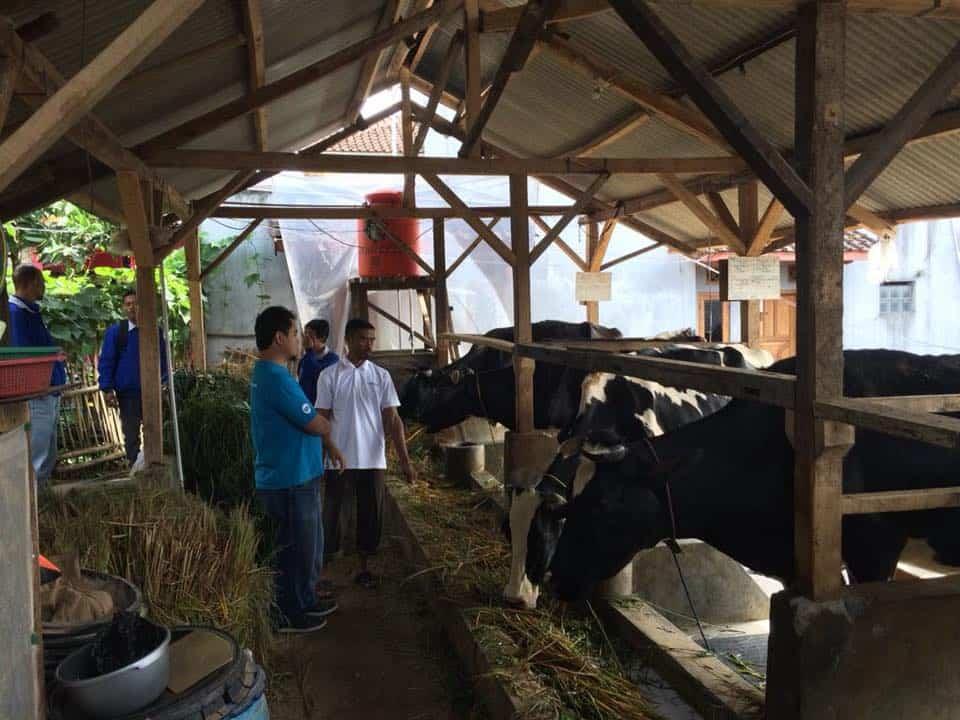 Paul in Indonesië, Farmer2Farmer